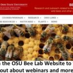 CATCH THE BUZZ – The Ohio State University 2017 Bee Lab Webinar Series