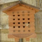 Eleven Guests At The Bee Hotel