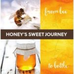 CATCH THE BUZZ – National Honey Board Creates New Educational Brochure